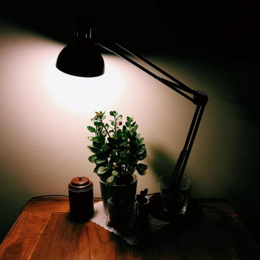 7 Ways You Can Lighten A Dark Room With No Natural Light